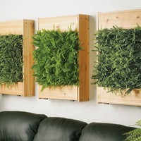 Plant Wall - OpulentItems.com