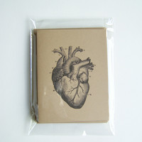 My Beating (Anatomical) Heart Blank Card Set with Envelopes, Set of 5