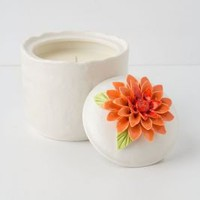 Jacinta Candle Pot  - Anthropologie.com