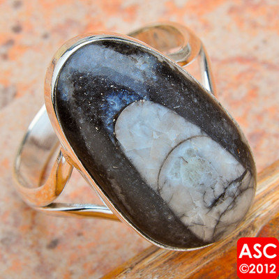 RARE ORTHOCERAS FOSSIL 925 STERLING SILVER RING SIZE 11 1/2 JEWELRY