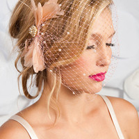 Birdcage veil - Blush feather adorned | birdcage veils, accessories by tessa kim