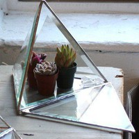 $85.00 Good Fortune Pyramid Vivarium by TheForeignArchives on Etsy