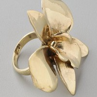 Monserat De Lucca Orchid Ring