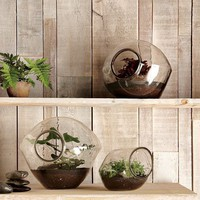 Pebble Terrariums | west elm