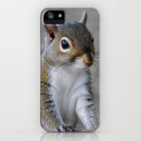 Squirrel iPhone Case by Charlene McCoy | Society6