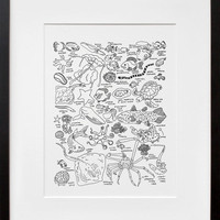 20x200 | Sea Creatures at The American Museum of Natural History, by Jason Polan