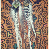 bear spirit...magnesite bear  grizzly feather earrings