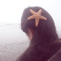 Large Starfish Barrette - Natural - Cute Adorable Beach Boho Elegant Romantic Whimsical Whimsy - Dreamy Sea Star - Mermaid Costume