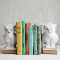 Owls Of Wisdom Bookends