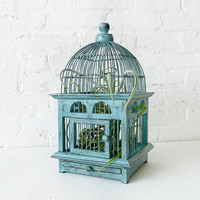 Air Plant in Blue Bird Cage  Distressed Teak by EarthSeaWarrior