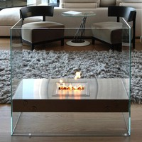 EcoSmart Igloo Ventless Glass Fireplace - $3500