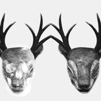 Deer and Skull