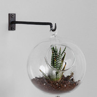 Urban Outfitters - Hanging Double-Bubble Glass Terrarium