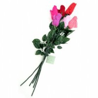 Low Rise Thong Rose Mixed Bouquet of 6 on HankyPanky.com!