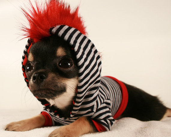 Dog clothes tiny teacup punk red mohawk from - Dog clothes for chihuahuas ...