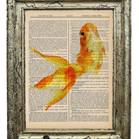 Funny Little Goldfish Bright Color Vintage Print on by AvantPrint