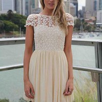 Cream Embroidered Lace Top Dress with Tulle Pleated Skirt