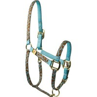 Amazon.com: Red Haute Horse GIRT1201 P High Fashion Horse Horse Halter, Giraffe Teal: Pet Supplies