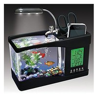 Amazon.com: Fascinations USB Desktop Aquarium: Toys & Games