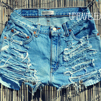 Denim Jean Shorts (SMALL)