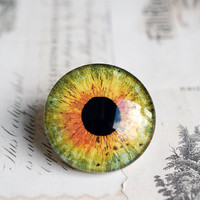 30mm handmade glass eye cabochon - green/orange eye