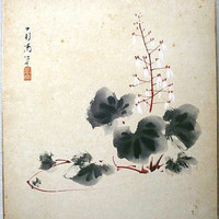 Vintage Japanese Painting Saxifrage in Showa by VintageFromJapan