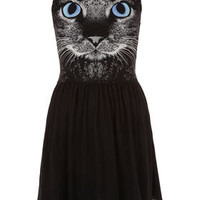 Petite Cat Motif Skater Dress - New In This Week  - New In