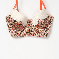 Coral Blooms Bra - Anthropologie.com