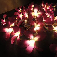 35 Flowers Purple Frangipani Fairy Lights String 3.5M PARTY,PATIO,WEDDING