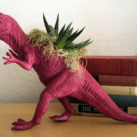 Raspberry Dinosaur Planter  Modern Art Centerpiece by CoastalMoss