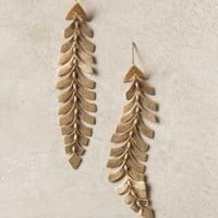 Southbound Plume Earrings - Anthropologie.com