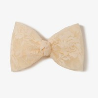 Oversized Lace Bow Barrette | FOREVER 21 - 1021840814