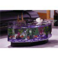 Fish Tank Coffee Table - OpulentItems.com
