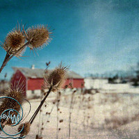 "Red barn photo winter snow dreamy whimsical 11x14"" print"