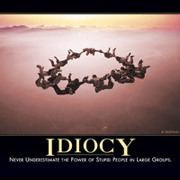 Idiocy Demotivator - The Original Demotivational Posters