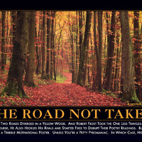 The Road Not Taken Demotivator - The Original Demotivational Posters