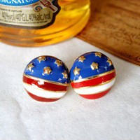 Cute the Stars and the Stripes Earrings