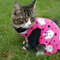 Pink Hello Kitty Clothing, Pet Cat Clothing