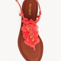 A&#x27;GACI Steno 69 Flower Trim T Strap - SANDALS