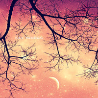 Night Sky Photo Twinkley Pink 85x11inch Photo by SSCphotography