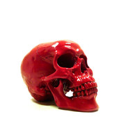 red skull head, weird, skeleton, spooky, skulls, artsy home decor, heads, goth, punk, anatomy, skull figurine, hipster