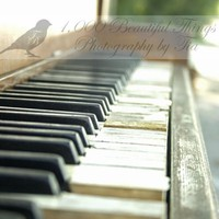 Sale 25 off Tickling the Ivories Piano by 1000beautifulthings