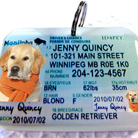 Canada Manitobo Driver License ID Tag for Cats or Dogs by ID4Pet