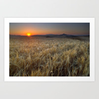 Color fields at sunset Art Print by Guido Montas