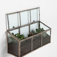  Glass Terrarium