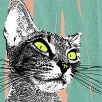 Product - 1. Noise Cat. Print. Limited by Fascinatingirl Store · Storenvy