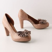 Pierina Bow Pumps - Anthropologie.com