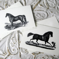 Equine Class 5x7 Note Cards Set of 6 by TerraDeiFarm on Etsy