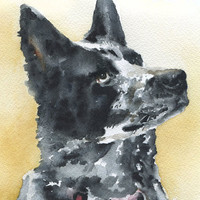 Custom Pet Portrait Original Watercolor Painting 8 x 10