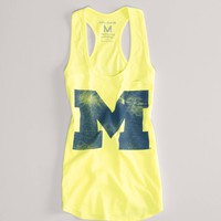 Michigan Vintage V-Neck T | American Eagle Outfitters